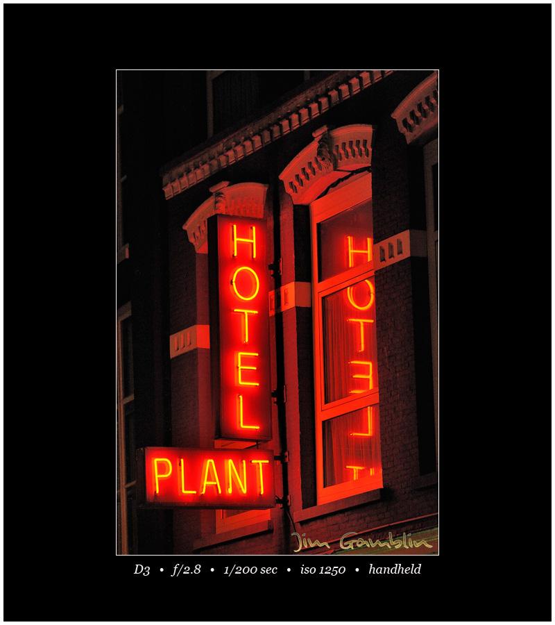 Hotel plant