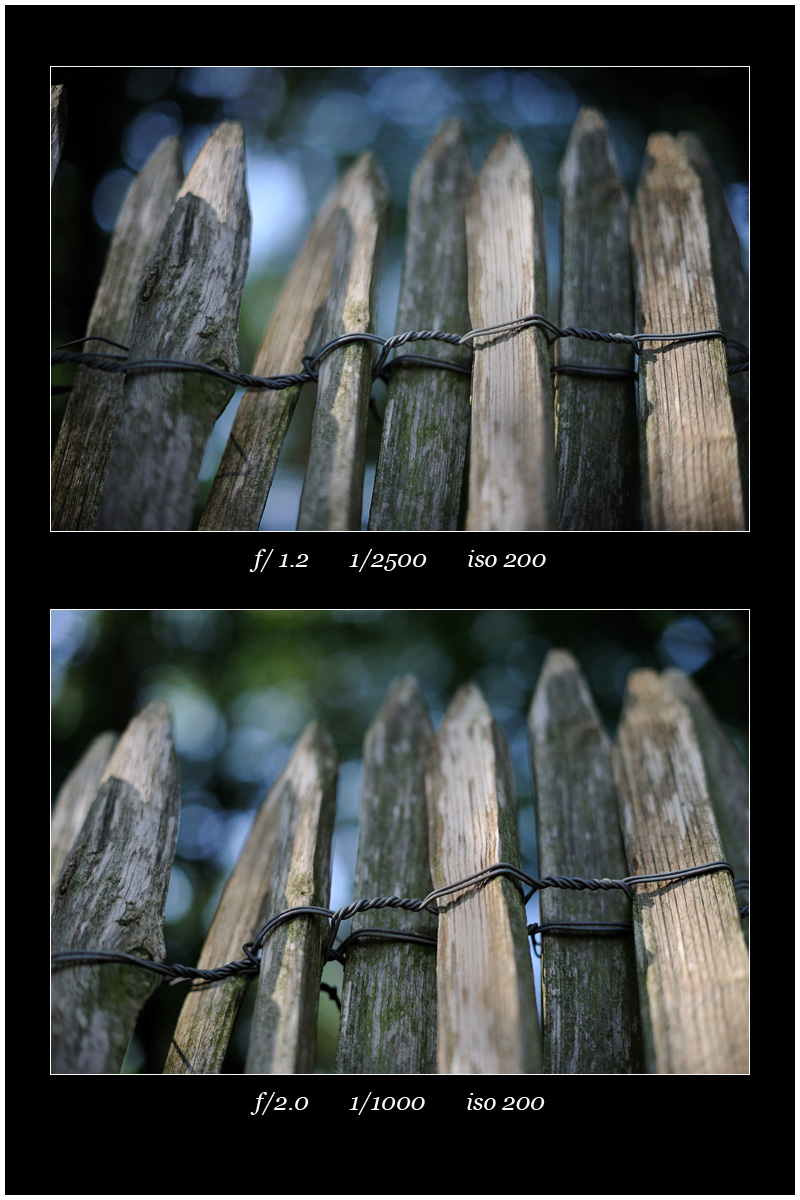 fence at f:1.2 and 2